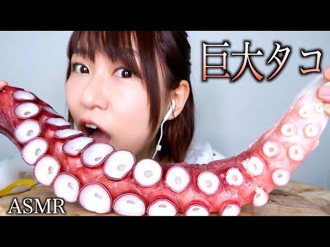 【ASMR】巨大タコの吸盤を食べる音【コリコリ】