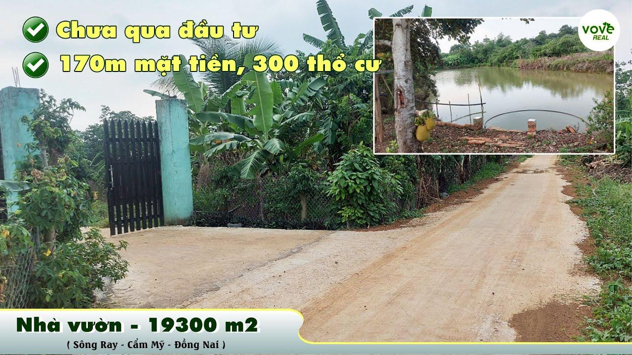 D064-Bán nhà vườn 19300m2 có ao nước lớn 170m mặt tiền, 300m2 TC, giá 10.43 tỷ tại Cẩm Mỹ Đồng Nai