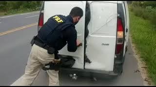 Após tentar fugir de abordagem, contrabandista de cigarros é preso pela PRF na BR-116, em Pelotas
