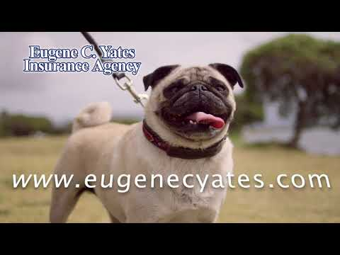 Homeowners Insurance Sacramento - Eugene C Yates Insurance Agency