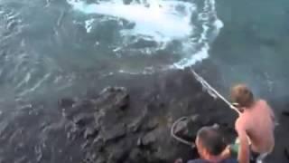 イタチザメを釣り上げる