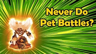 Why Are People Proud About Not Doing Pet Battles? - Discussion topic 2