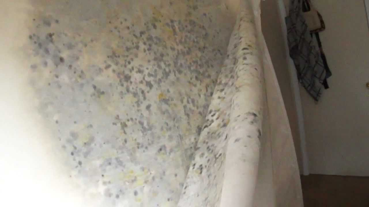 Tempur Pedic Mattress 9 Month Old Found With Mold Youtube