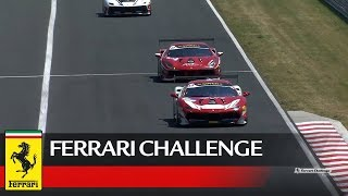 Ferrari Challenge Europe – Budapest 2017, Trofeo Pirelli Race 1