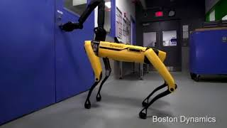 4-legged Robots Escape from Lab!