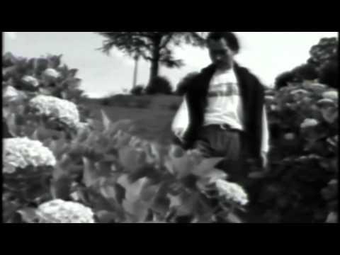 José Velez - Cuando Alguien Dice tu Nombre