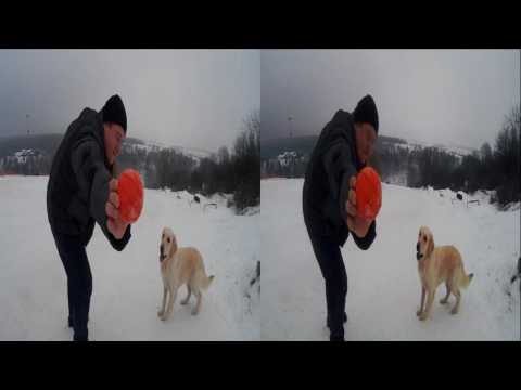 Funny Dog 3D ! Adventure on the Ski Resort ! 3D VIDEO