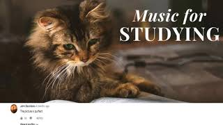 [Comment Section] Classical Music for Studying & Brain Power | Mozart, Vivaldi, Tchaikovsky