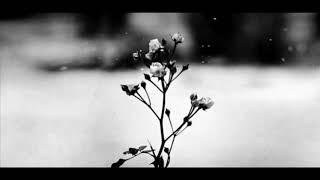 Chopin - Spring Waltz (classic music)