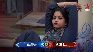 Bigg Boss 3: Will Punarnavi sacrifice to save Rahul?..