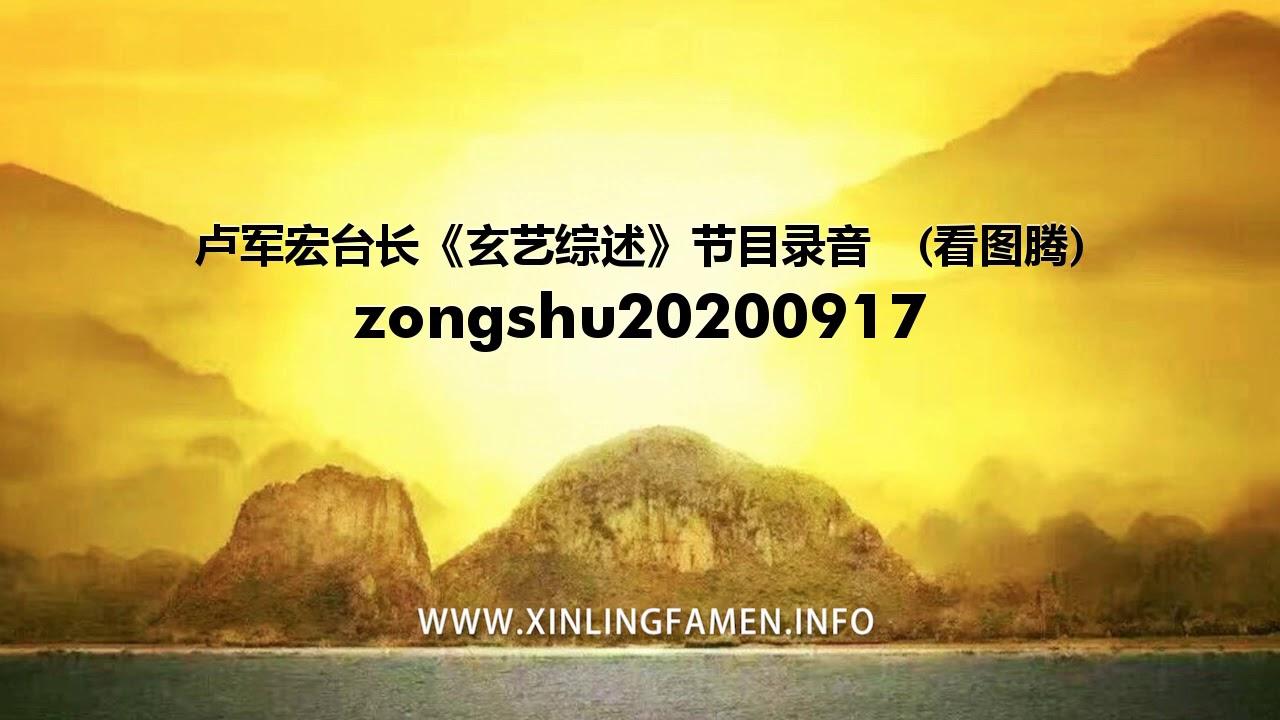 心灵法门 zongshu20200917 - 卢军宏台长《玄艺综述》节目录音  (看图腾)