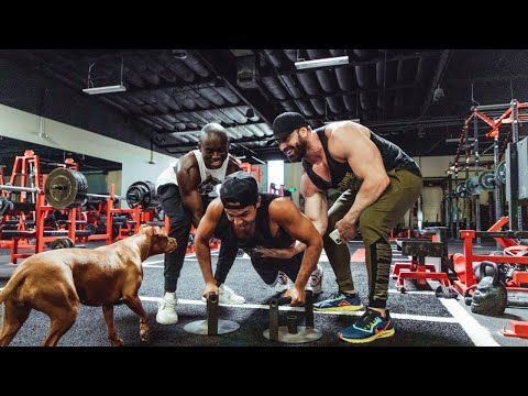 Crazy Pushup Chest Day W Nelk Steve Will Do It Time to get payback on steve will do it, trust me i'm going to get my money. pratchet com