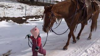 Djevojčica je povela konja u šetnju, ali se spetljala. Reakcija konja je istopila svima srce!
