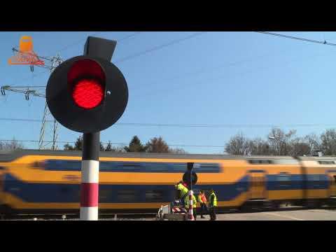 DUTCH RAILROAD CROSSING - Maarheeze - Stationsstraat photo