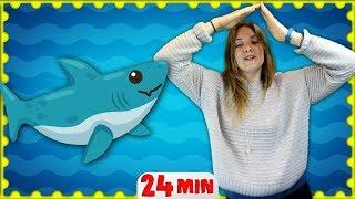 Baby Shark Song | Nursery Rhymes for Children & Kids