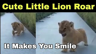 The roars of little Lion cub reminds Simba from The Lion K..