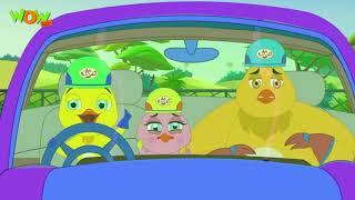 Cuộc rượt đuổi của cáo và gà #10 - ANT TV