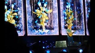 Ed Sheeran Lyon  - Perfect