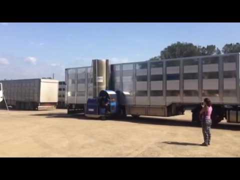 Monocepillo hombre a bordo - Limpieza de Camiones Animales Vivos - Girona
