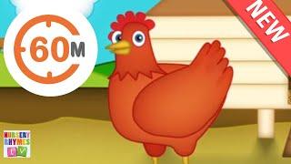 BAA BAA BLACK SHEEP and +More Nursery Rhymes   Preschool Learning Songs