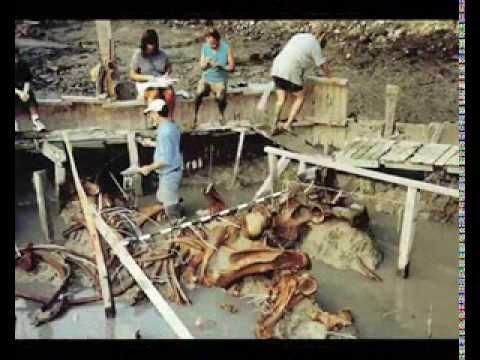 Riesige Menschliche Skelette