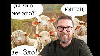 """""""Тупая овца"""" наехала"""