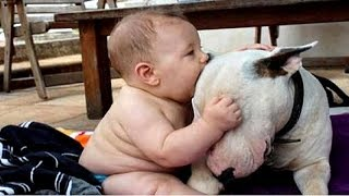 BABIES having FUN with DOGS - Your CUTENESS and LAUGHING dose of the day!