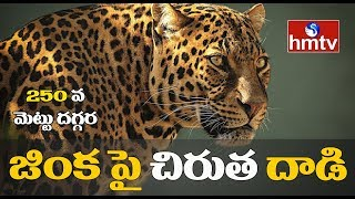 Leopard spotted attacking Deer in Tirumala, create panic a..