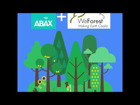 ABAX partners with WeForest to grow a forest in Malawi
