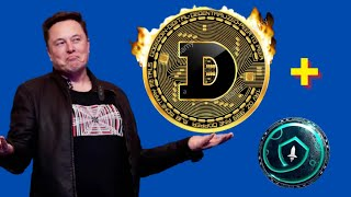 DOGECOIN ALL-TIME HIGH! BUY NOW?? DOGECOIN To $1! ALSO SAFEMOONE HUGE UPDATE!! buy Safemoon?