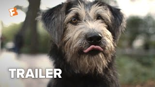 Lady and the Tramp Trailer #2 (2019) | Movieclips Trailers