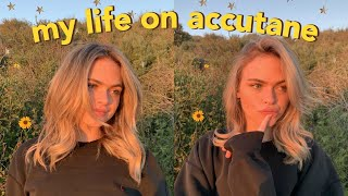 a day in the life on accutane + updated skincare routine!   Summer Mckeen