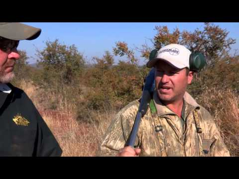 What Are The Best Hunting Calibers For African Game?