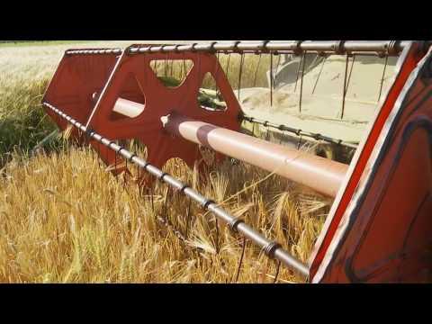 Hållbar odling från Lantmännen