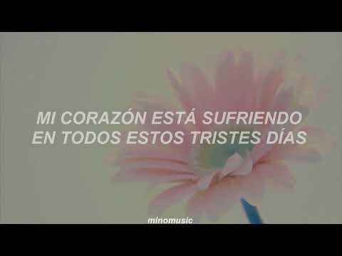 Because I'm Stupid - SS501 [Traducida al Español]