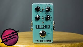 TC Electronic Quintessence Harmonizer Demo (Ambient Guitar Gear Review)