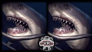 VR VIDEOS 3D SBS Underwater for VR BOX 3D not 360 VR