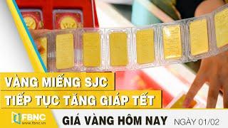 Giá vàng hôm nay 1/2   Vàng miếng SJC tiếp tục tăng giáp tết   FBNC