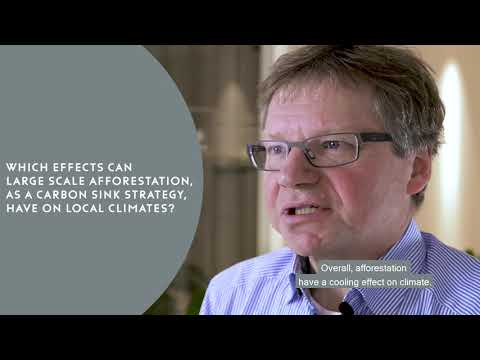 Towards a comprehensive assessment of the Swedish national climate policy