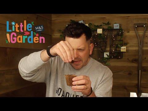marksandspencer.com & Marks and Spencer Promo Code video: M&S | The Skinny Jean Gardener's Review of Little Garden Ep1