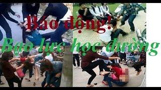 Góc nhìn: Từ vụ 5 học sinh đánh hội đồng bạn học - Báo động bạo lực học đường!