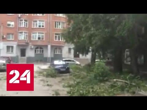 В Новосибирске ветер валил деревья, переворачивал остановки и срывал крыши
