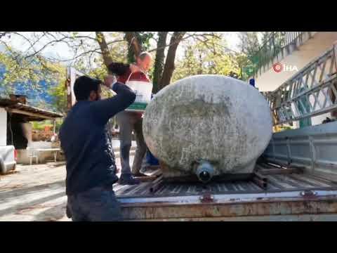 Antalya'da Üretilen Yavru Alabalıklar İlgi Görüyor