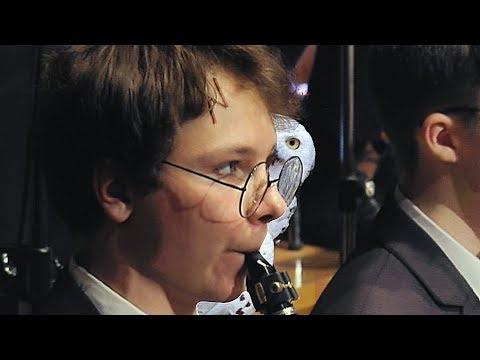 Hogwarts Symphony Orchestra plays Harry Potter Orchestral Medley ハリー・ポッターシリーズ  Yule Ball Waltz