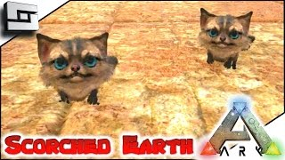 Scortched Earth Map.Ark Scorched Earth Jerboa Baby Breeding E24 Scorched Earth Map