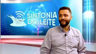 Entrevista com Rafael Ribeiro - Gerente Técnico da STgenetics do Brasil - Sintonia do Leite #1