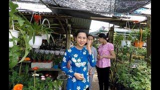 Đi chợ lách mua kiểng về trồng - Hương vị đồng quê - Bến Tre - Miền Tây