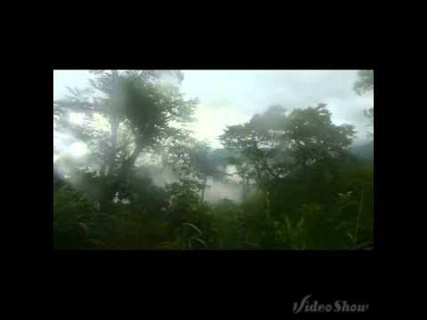 鄧麗君-高山青(阿里山的姑娘)現場版 台灣阿里山森林鐵路 邓丽君 Teresa  Teng