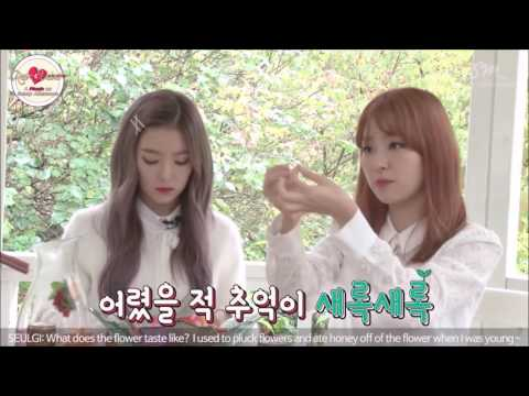 160927 Red Velvet A Picnic on Sunny Afternoon 고화질 합본