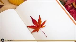 Autumn Classical Music